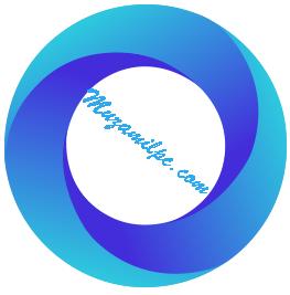 Ashampoo Photo Optimizer 8.2.3.24 Crack With License Key Free Download